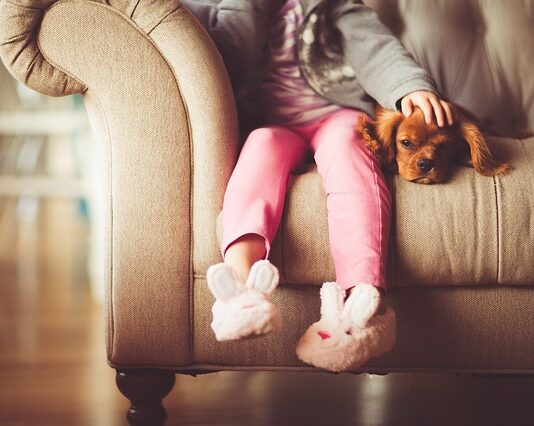 Które marki produktów dla psów są szczególnie warte polecenia